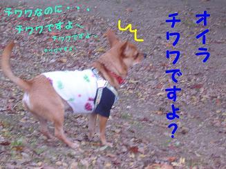 081201_1.jpg