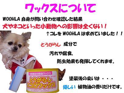 08_blog_002.jpg