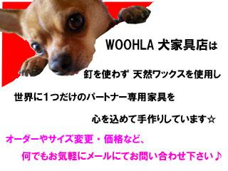 08_blog_004_20090128214846.jpg