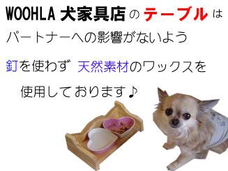 08_blog_005_20081024171317.jpg