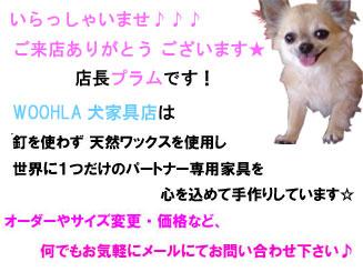 08_blog_008.jpg
