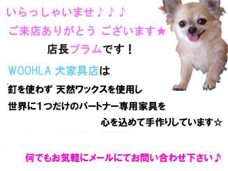 08_blog_008_20090127184918.jpg