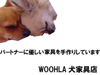 08_blog_009_20090109175707.jpg