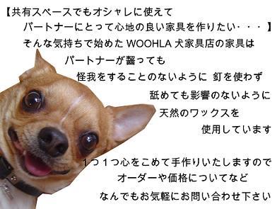 08_blog_011_20090124190635.jpg
