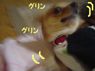 090112_1.jpg