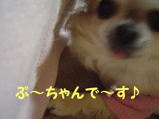 090113_4.jpg