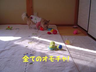 090119_4.jpg