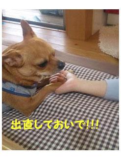 090501_04.jpg