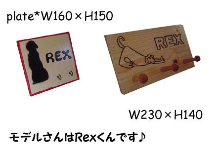 09_1_7.jpg