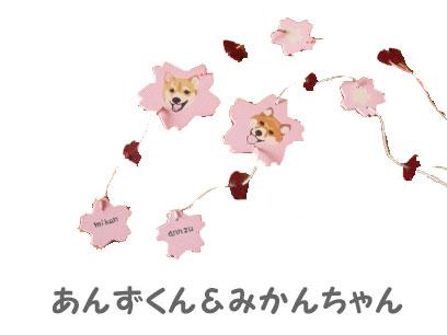 09_2_13.jpg
