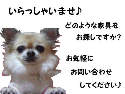 09_2_1_20090125171835.jpg