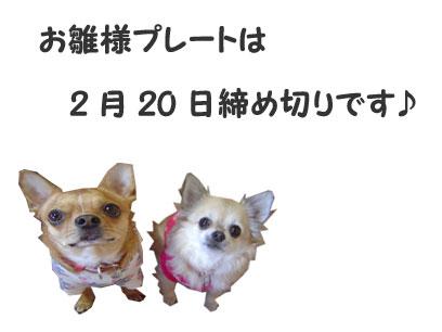 09_2_5_20090216212520.jpg