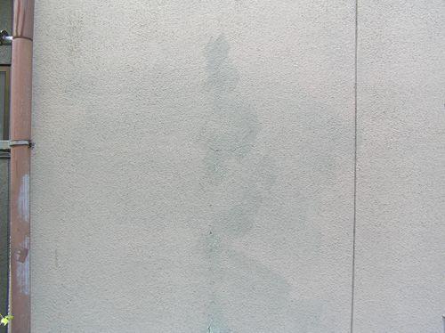 P6047488_R.jpg