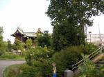 富士塚から浅間神社をのぞむ