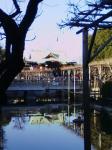 亀戸天神2008初詣