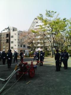 亀戸西六丁目町会春の消防訓練