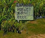 mabi388.jpg