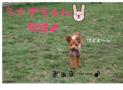 wasabi犬!?4