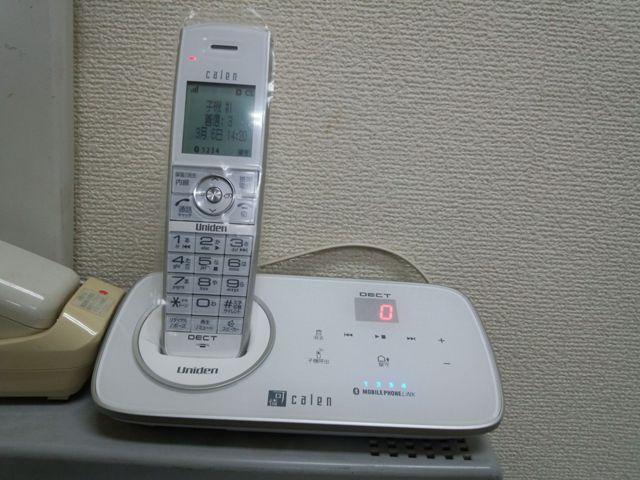 DSC_0061_20120306142343.jpg