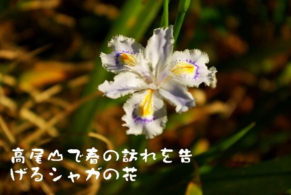 090412_999.jpg