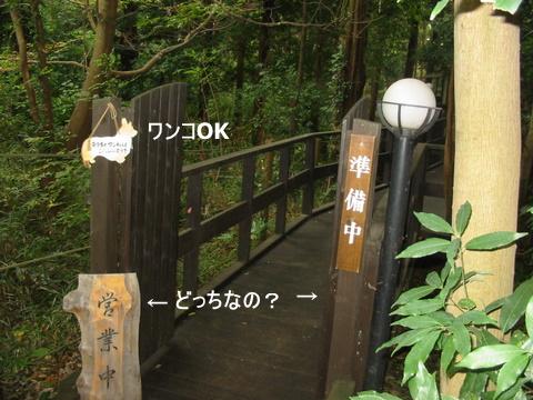 むくちゃん0046