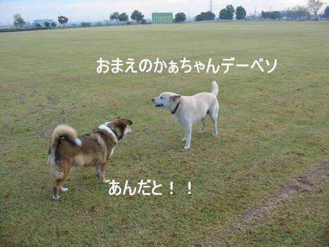むくちゃん0062