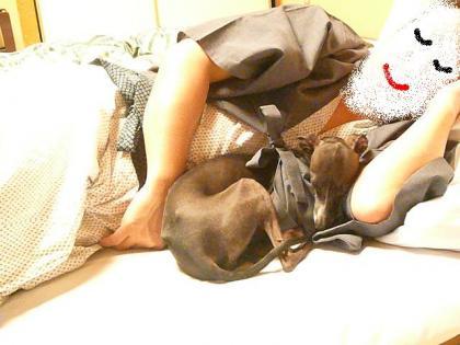 sleeping♪