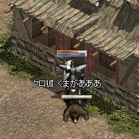 755_20090308170044.jpg
