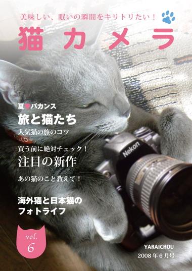/猫カメラ1