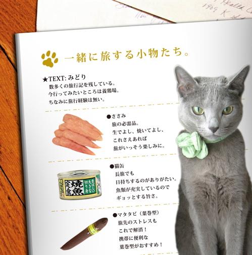 /猫カメラ2