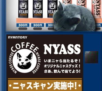 NYASS7