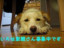 DSCN2782_20090322130756.jpg