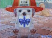 7SHIBA☆ICHIさんのおさむ プレゼント