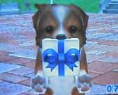 17KITさんのウェルプレゼント1画像 369