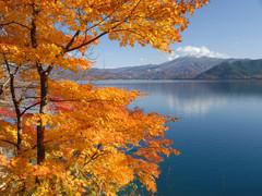 田沢湖の紅葉