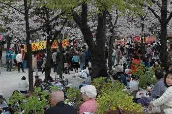 3 賑わう隅田公園