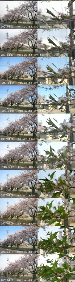 20070428000020.jpg