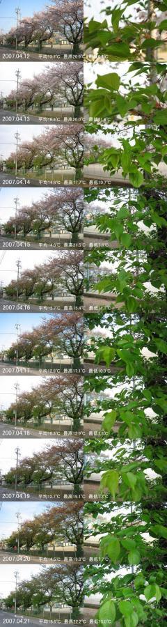 20070430193258.jpg