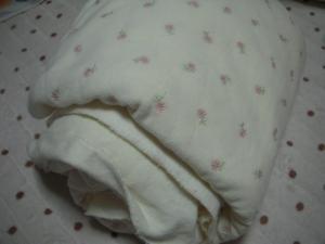 2009_0105_225418AA.jpg