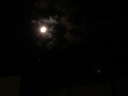 moon0.jpg