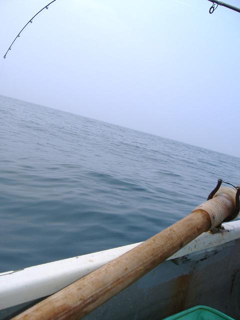 080517boat.jpg