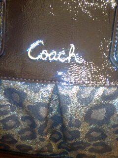 coach 004