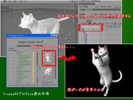 20081024_02.jpg