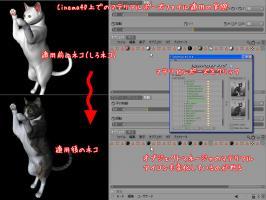 20081024_03.jpg