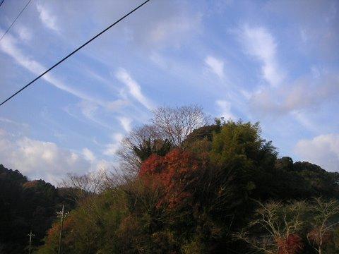 kamogawa061210