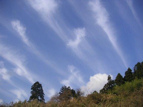 kamogawa061211