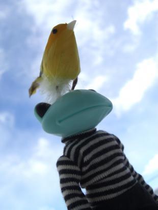 おい、こら、巣作りはするなよ!