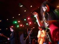 インディーズ アーティスト ゆき姉の「ゴールデン街桜フェスティバル」at新宿歌舞伎町クラブハイツ03
