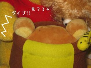 020_20091208144126.jpg