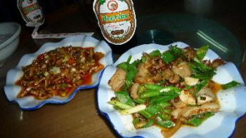 odomxai_chinese